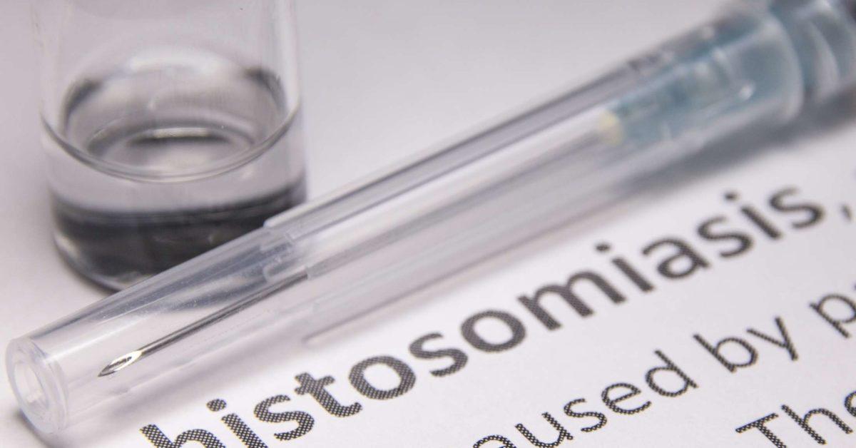 parazita schistosomiasis)
