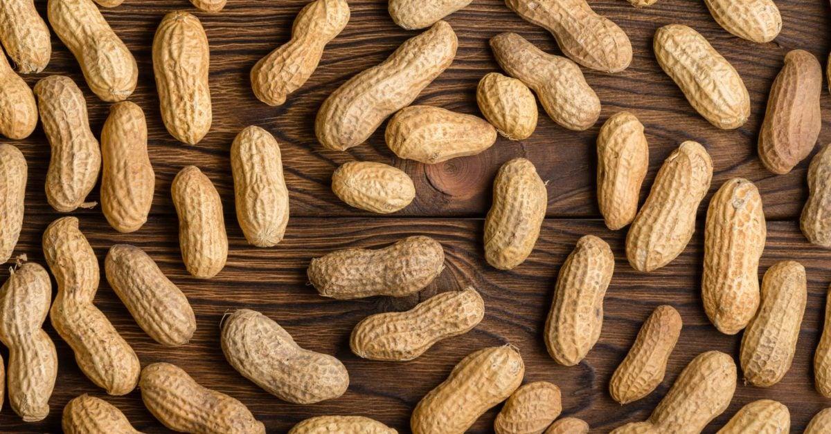Peanut Allergy | ECARF
