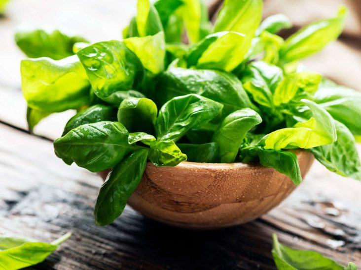 Basil: Uses, benefits and nutrition