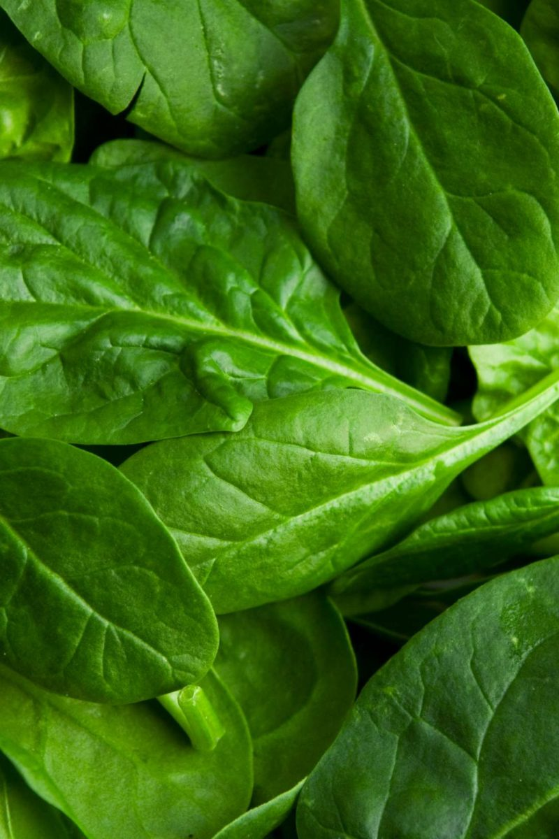 Spinach: Nutrition, Health Benefits, And Diet