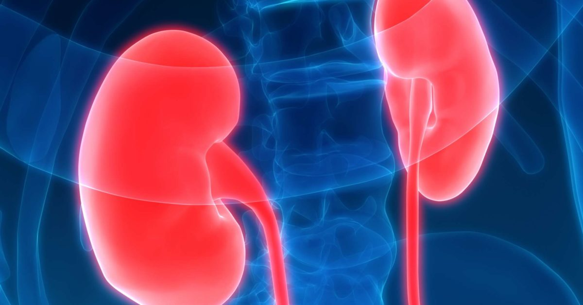 Nephritis Types Causes And Symptoms
