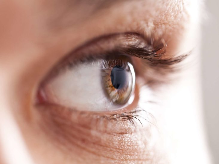 Age Related Macular Degeneration Amd Symptoms And Treatment