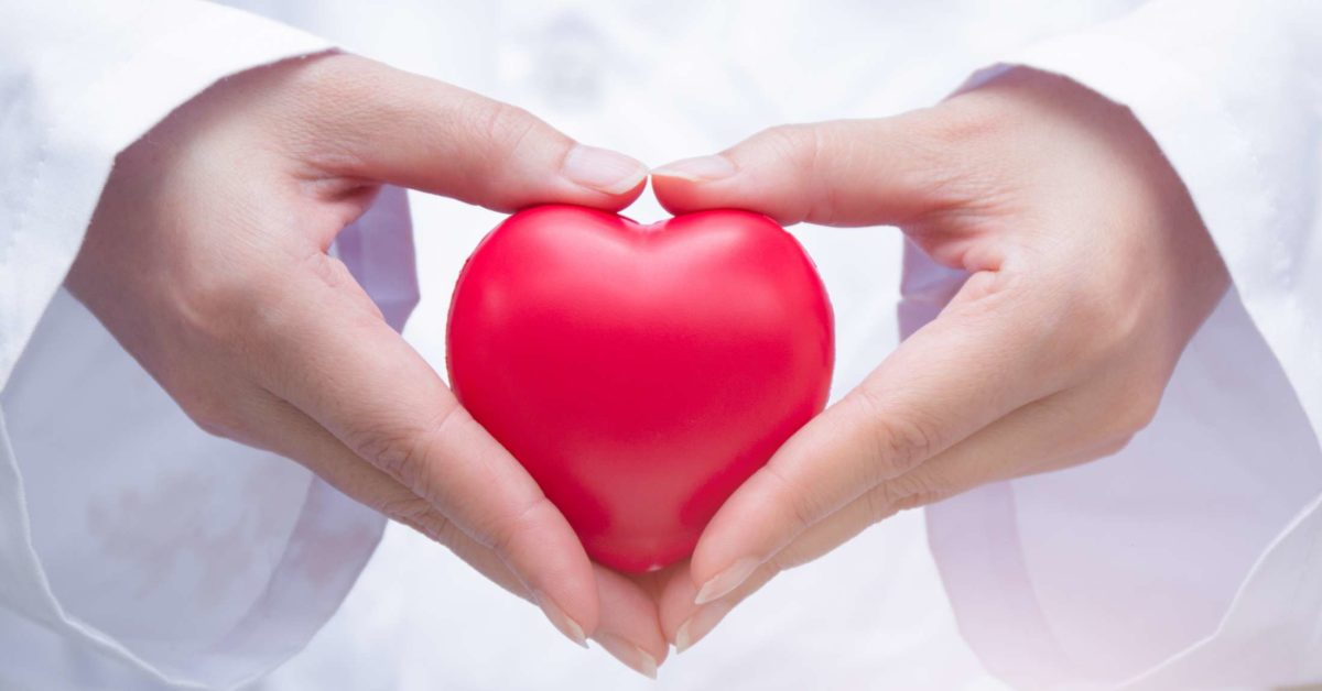 There's no such thing as heart-protecting fat, study finds