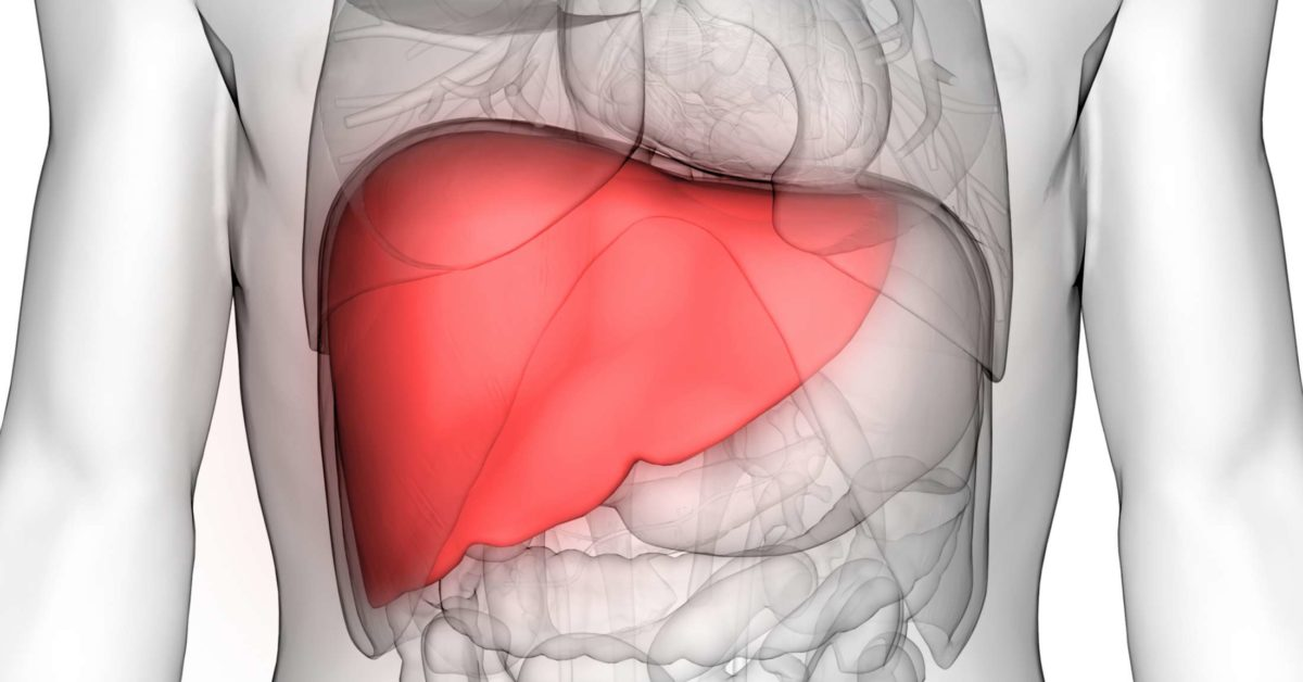 Liver Transplant Survival Rate Statistics And Recovery