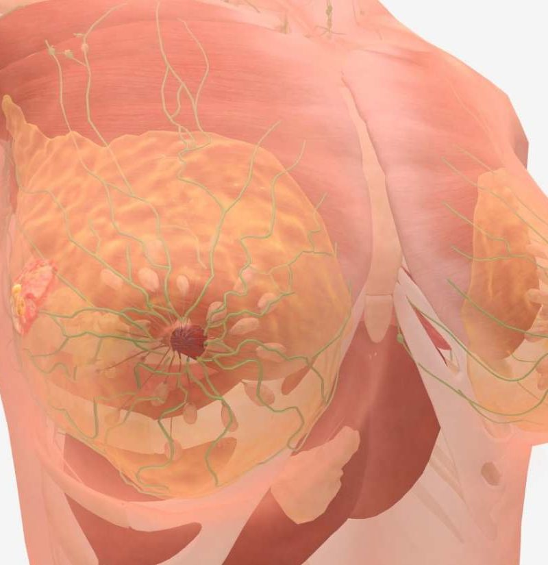 hormonal cancer in liver