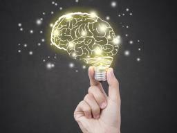 Unexpected memory retrieval mechanism found in landmark study