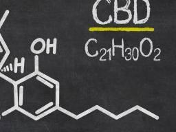 CBD Oil for Depression, Schizophrenia ...
