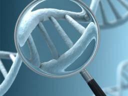 esophageal cancer genetic link)