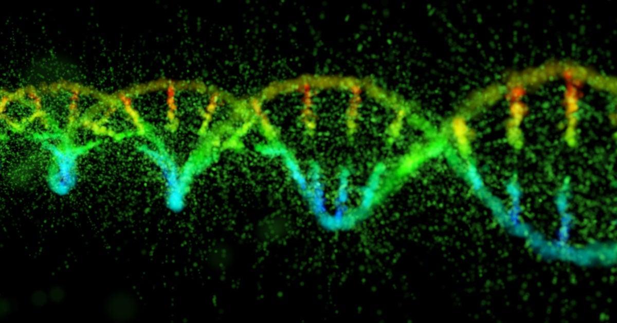 Genetic mutation makes TB resistant to common antibiotic