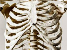 Back Rib Pain Causes And Treatment