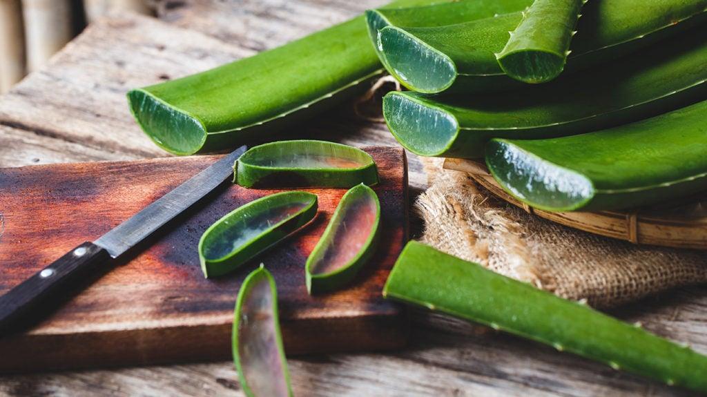 Aloe Vera 8 Health Benefits