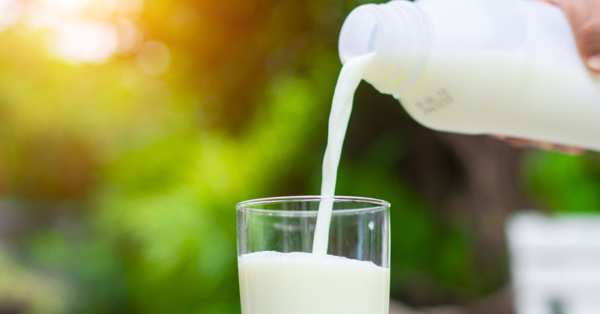 Could dairy protect against diabetes and hypertension?