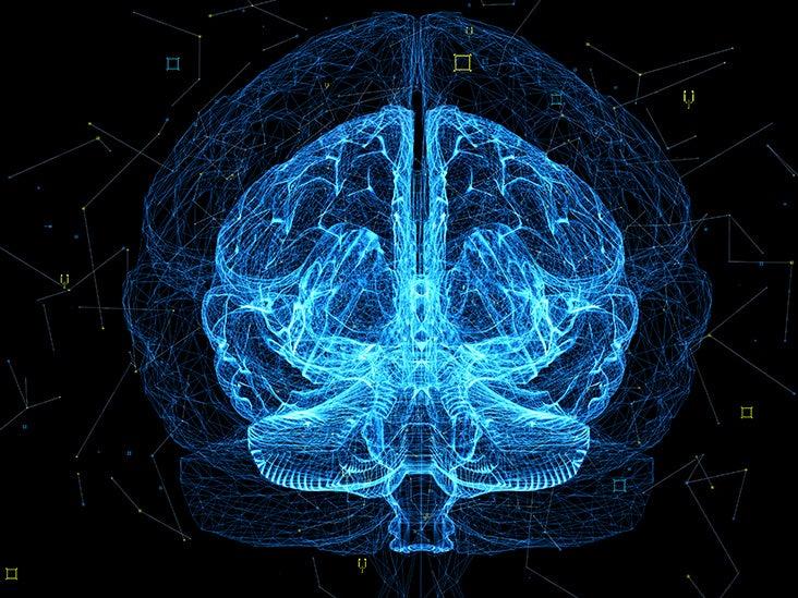 What happens in the brain when we sleep?