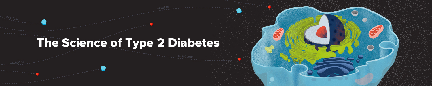 The science of type 2 diabetes