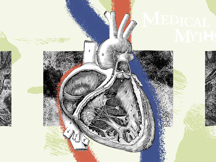 09 medical myths 732x549 thumbnail.